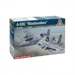 "I2725 1:48 A-10C ""BLACKSNAKES"""