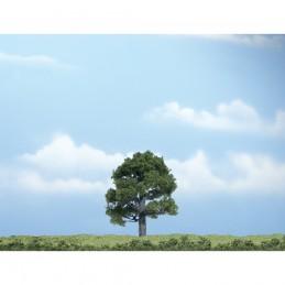 WTR1606  3.25in. Oak Tree...