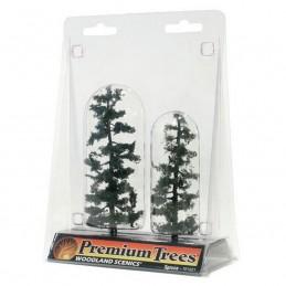"WTR1621  4-5"" Spruce Tree..."
