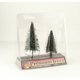 WTR1625  3-4in. Conifer...