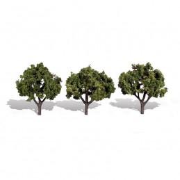 WTR3507  CLASSICS TREES-...