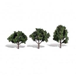 WTR3511  CLASSICS TREES-...