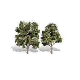 WTR3513  CLASSICS TREES-...